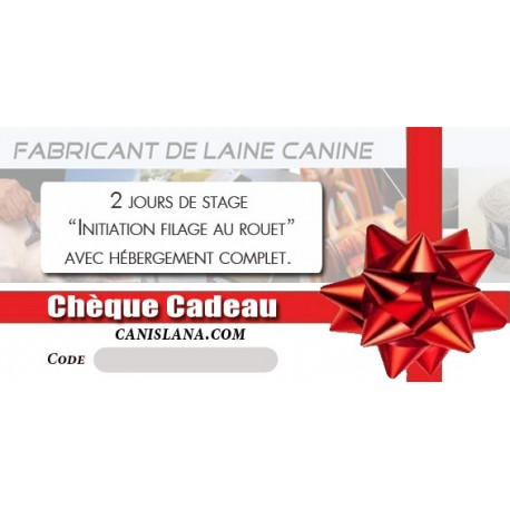 Chèque cadeau 350 € - Formation Initiation filage 2J