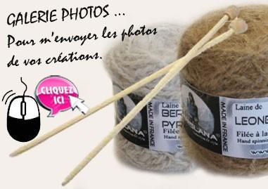 Photos réalisations en laine canine et féline